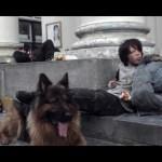OSBB-mon-chien-qui-fait-lespuces