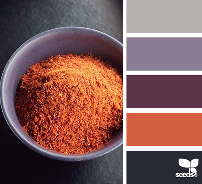 Spiced Color Palette