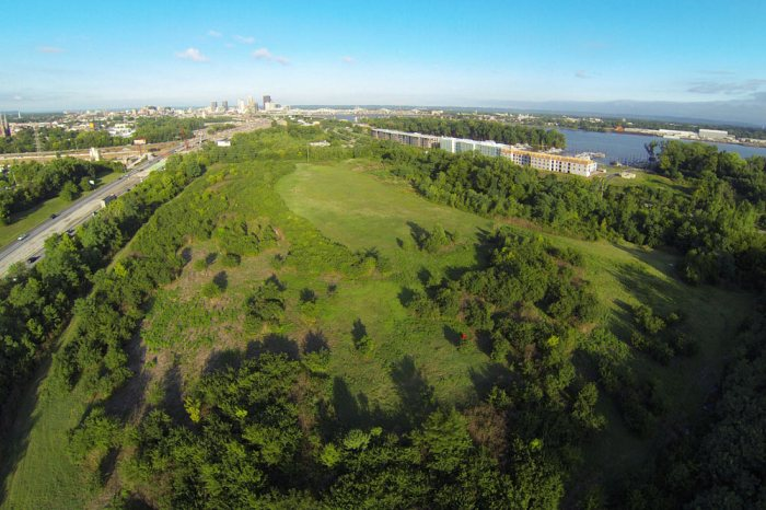 Aerial view of the Waterfront Botanical Gardens site looking west toward Downtown. (Courtesy Botanica)