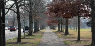 (Branden Klayko / Broken Sidewalk)