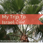 My Trip To Israel: Eilat