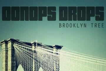 brooklyn-tree-oonops