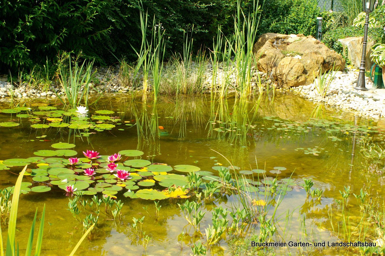 Gartengestaltung Mit Teich