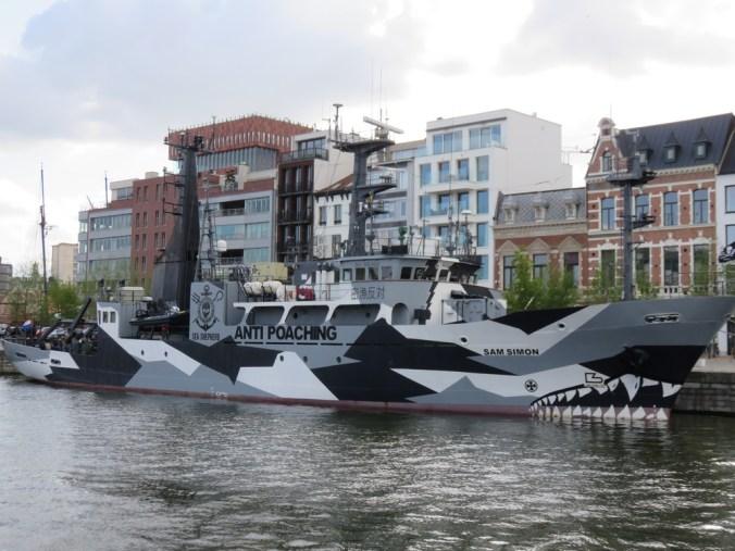 'Sea Shepherd's Sam Simon in Antwerp