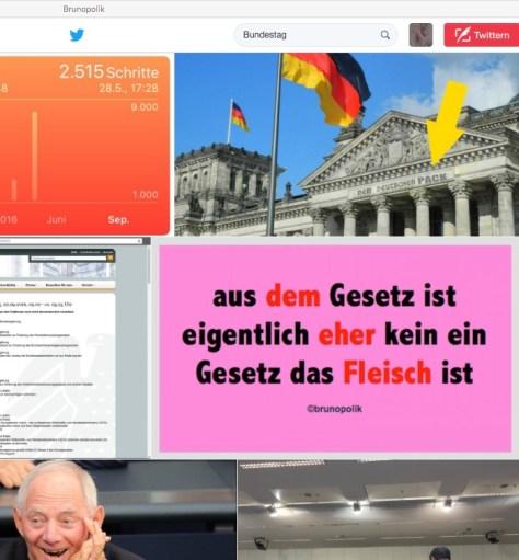 """Screenshot Twitter-Fotos Bundestag mit einer Haiku-Strophe aus dem Poetry-Text der PolitikerInnen-Worte """"Dinge der Nelken"""""""