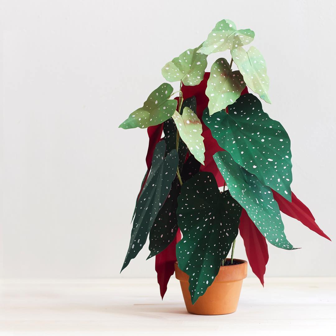 Lifelike Plants Lifelike Paper Plants Are Perfect For People Lacking Green