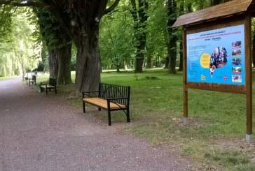 Nowe ławki w Parku Wolności