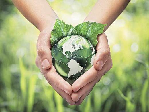 Why-Narendra-Modi-govt-needs-to-be-transparent-with-its-environmental-policy