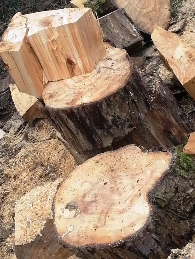 chopped wood