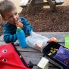 picnic with ellas kitchen and trunki paddlepak