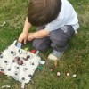 collecting conkers - silent sunday photo