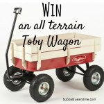 Festival and garden fun with a Loubilou Toby Wagon giveaway