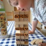 Supporting WWF through tumble tower game and puzzles