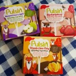 Pulsin' Kids fruity oat bars review