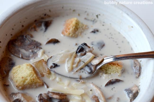 Creamy Button and Bella Mushroom Soup 1