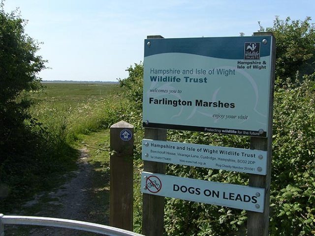 farlington-marshes-01