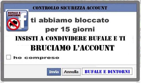 Account bufaloide.