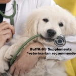buff-k9-veterinarian-recommended-text