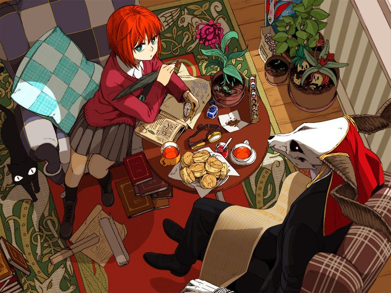 Anime Magic Wallpaper The Ancient Magus Bride Anime Early Impressions Funblog