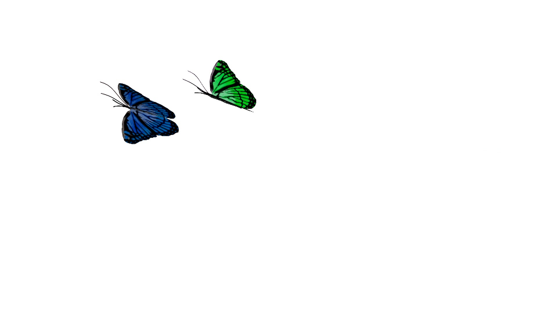 Flying Butterfly Animated Flying Butterfly Animation