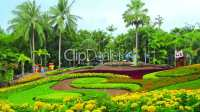 flowers in Nong Nooch tropical garden in Thailand: Royalty ...