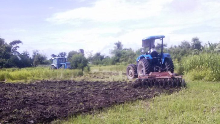 Cojuangco-Aquino lackeys order destruction of crops in Luisita — farmers