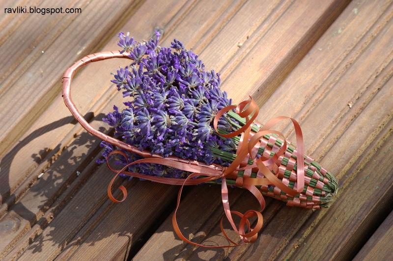Новогодний цветок лаванда Новости о Болгарии
