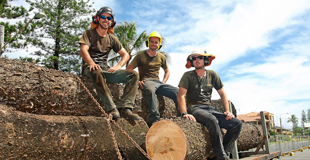 Is Hiring An Arborist Worth Your Time And Money