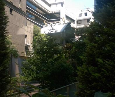 ビルの谷間の神社