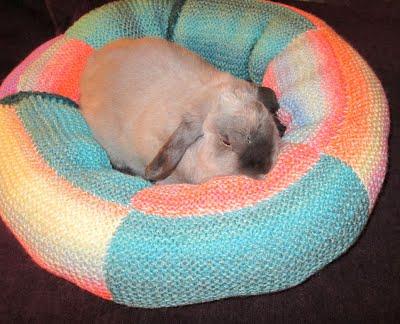 Where Do Rabbits Sleep Bunny Beds Bunny Approved