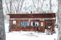 Thumper | Bunny Lane Cabins
