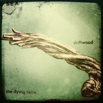 Driftwood is The Dying Falls' first EP, released in 2011 | photo courtesy of thedyingfalls.bandcamp.com