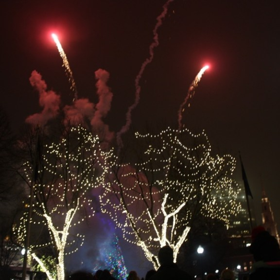 A short fireworks display began just as the tree was lit