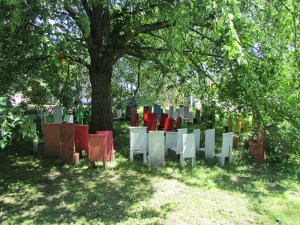 "Gail Bos' ""Children's Chair Project"" places a cluster of miniature chairs around a large tree to represent diversity and our need to prepare our children for the future 