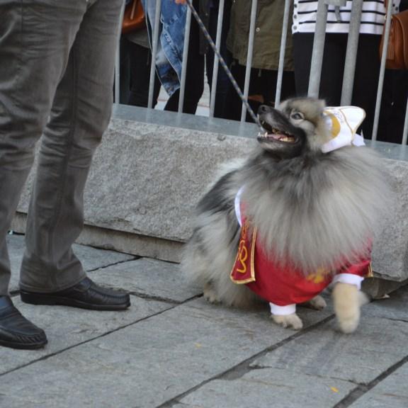 A Pope costume.