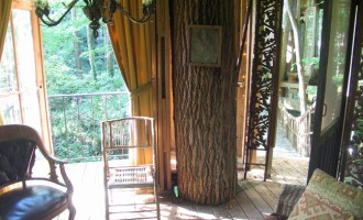 Treehouses For Adults, the I-Ching, and Serious Environmentalism: A Visit to Peter Bahouth's Private Wooded Paradise