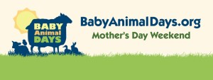 Baby Animal Days Giveaway!
