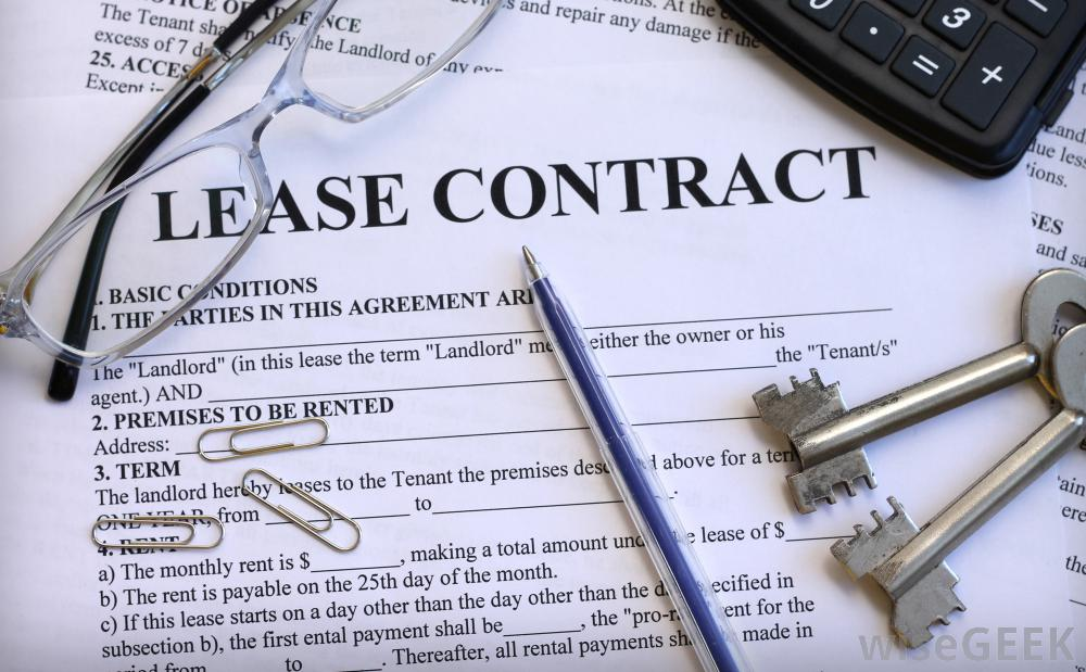 The Different Types of Tenancies and