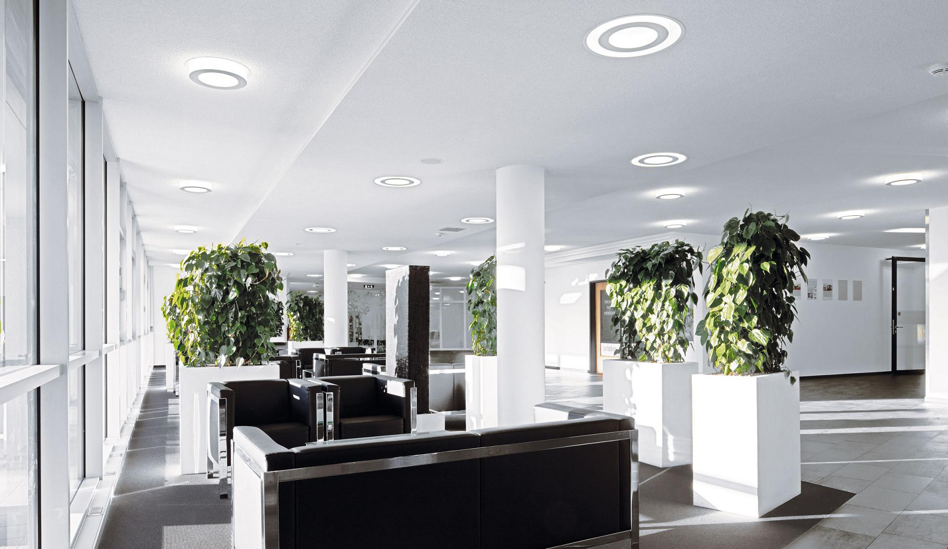 Office Lighting How Natural Office Lighting Solutions Can Improve Business Performance