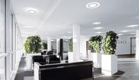 How Natural Office Lighting Solutions Can Improve Business ...