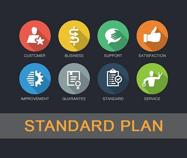 Standard Web Support Plan \u2013 Business IT Essentials
