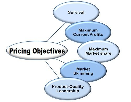 What is Pricing in Marketing? definition and meaning - Business Jargons