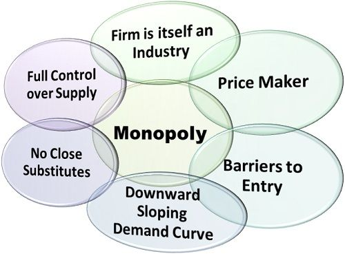 Monopoly Market Features and Examples of a Monopoly Market
