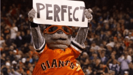 perfect game matt cain