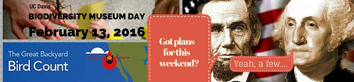 Need some free educational plans for this President's Day weekend? Here you go!
