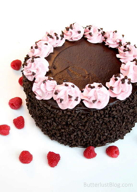 Chocolate Raspberry Layer Cake - Butterlust