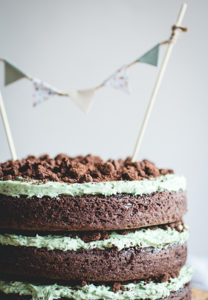 Mint Chocolate Chip Cake // butterlust.com