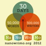 It's the most wonderful time of the year: NaNoWriMo!