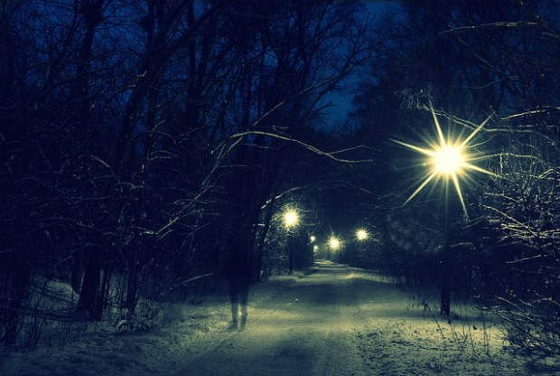 """ghost of christmas past on the illinois prairie path"" image by Flickr user clarkmaxwell"