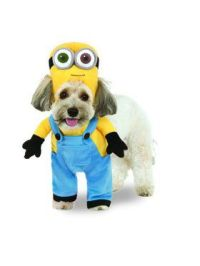 Pet Costumes - Pet Halloween Costumes | BuyCostumes.com